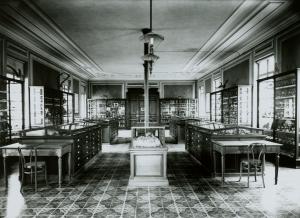 ancien musée (1)